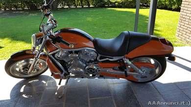 Foto - Harley-Davidson V-Rod - 2006